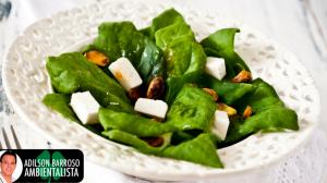 O espinafre é um ótimo aliado para a perda de peso,você sabia?Veja só.:(foto divulgação)