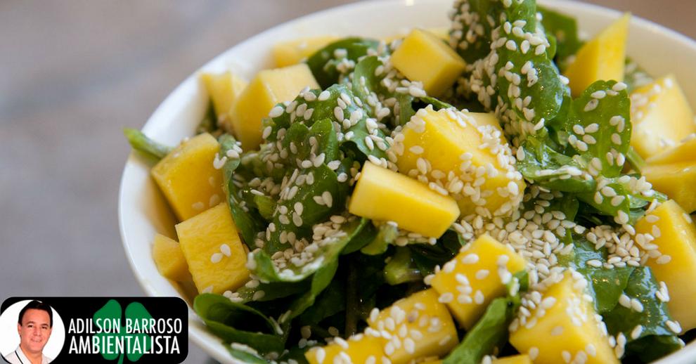 O agrião é muito rico em nutrientes e benéfico para a saúde,aprenda uma receita deliciosa de salada.:(foto divulgação)
