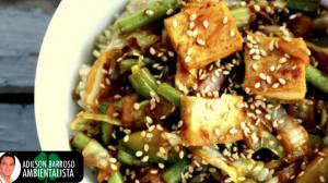 Consuma o tofu para ter a pressão arterial em dia,veja porque e aprenda uma receita deliciosa.:(foto divulgação)