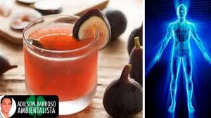 Quer uma bebida saudável e que ainda te da muita energia?Veja que o figo é a fruta certa.:(foto divulgação)