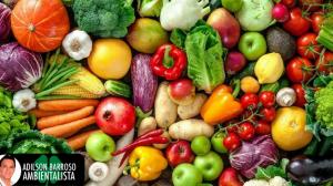 Saiba quais alimentos devem serem consumidos crus ou cozidos.:(foto divulgação)