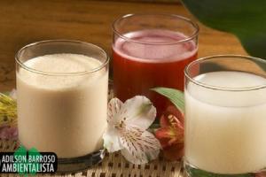 Quais são as bebidas que nos deixam mais gordos?