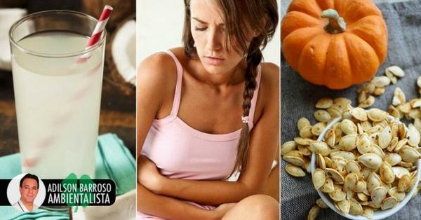 5 remédios benéficos para combater a amebíase