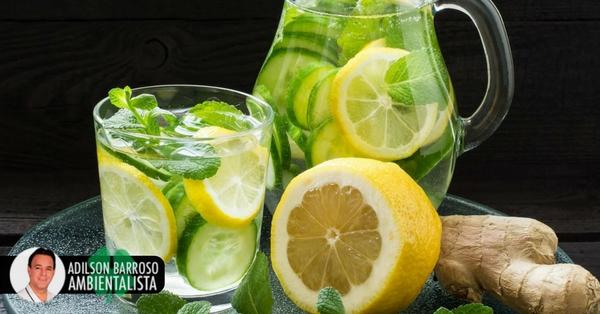 Elimine as toxinas com estas 4 bebidas com hortelã