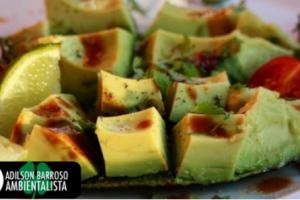 abacates (Imagem divulgação)