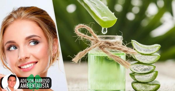 5 benefícios de tomar suco de aloe vera diariamente