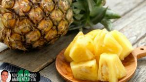 Remédios naturais feitos com abacaxi fácil e eficaz