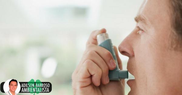 Usando esta planta você pode se livrar da asma de uma vez por todas