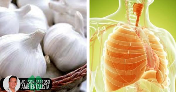 Remédios naturais para limpar e fortalecer os pulmões