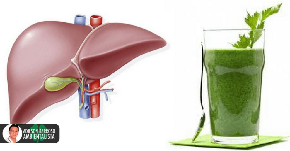 fígado (Imagem divulgação)