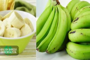 banana (Imagem divulgação)