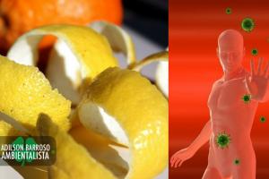 limão (Imagem divulgação)