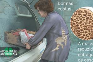 osteoporose (imagem divulgação)