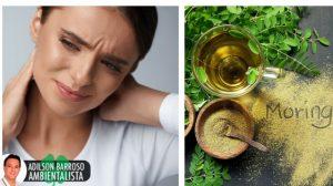 7 soluções de ervas para tratar a fibromialgia
