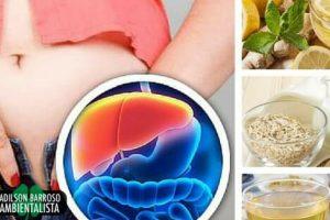 5 bebidas à noite para desintoxicar o fígado e perder peso