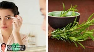 Preparações naturais para crescer as sobrancelhas