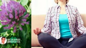 menopausa (Imagem divulgação)