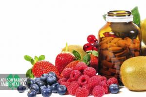 vitaminas (Imagem divulgação)