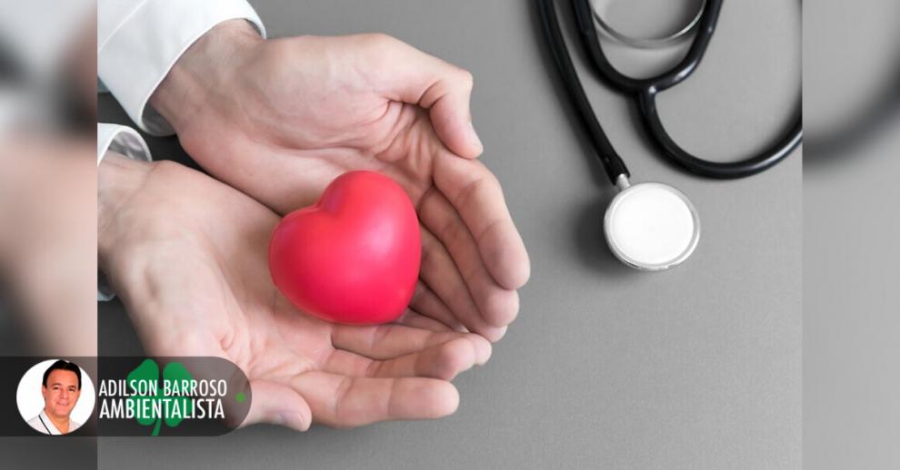 doenças cardíacas (Imagem divulgação)