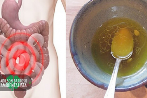 limpar o intestino (Imagem divulgação)